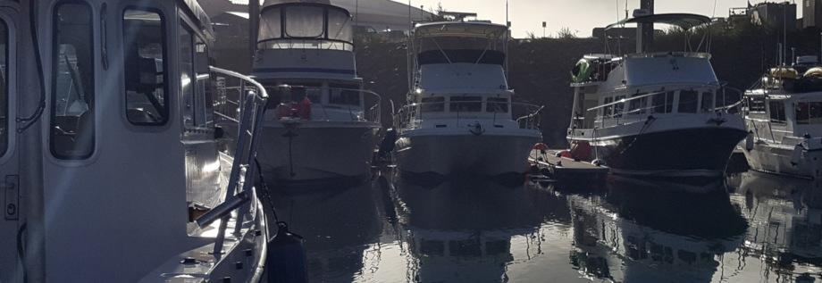 ocho rios port webcam